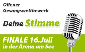 startseite-stimme-fuer-woelfersheim